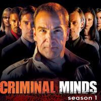 Crítica - Criminal Minds ( Mentes Criminosas ) - Primeira temporada